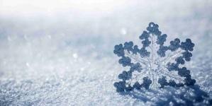Neve, soccorsi e provvedimenti in tutta la Puglia